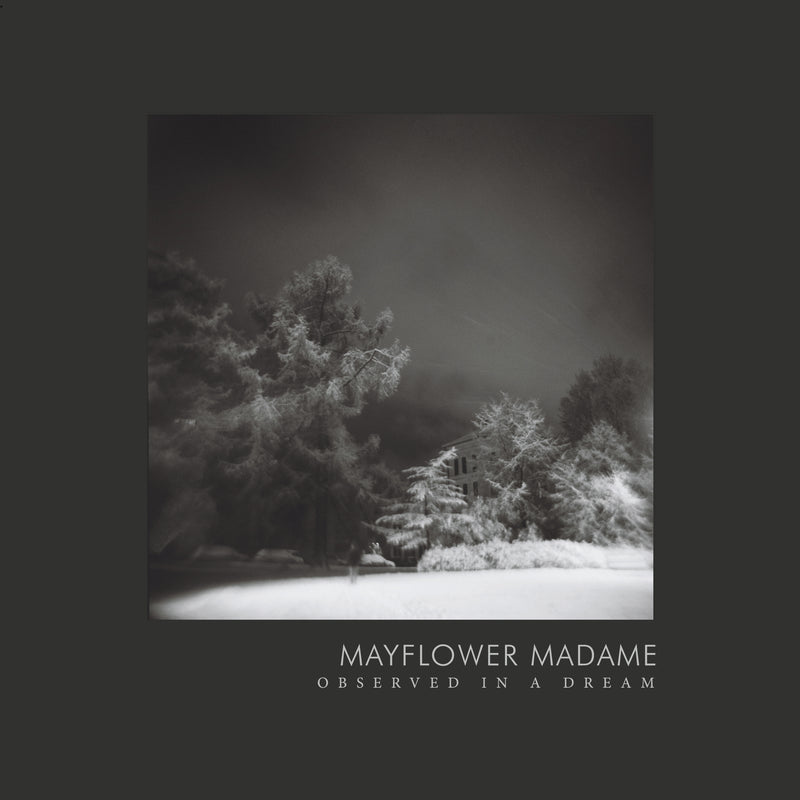 Mayflower Madame - Observed in a Dream,Vinyl,Night Cult Records - Fuzz Club