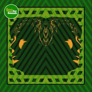 Various: A Tribute To Pet Sounds,Vinyl,The Reverberation Appreciation Society - Fuzz Club