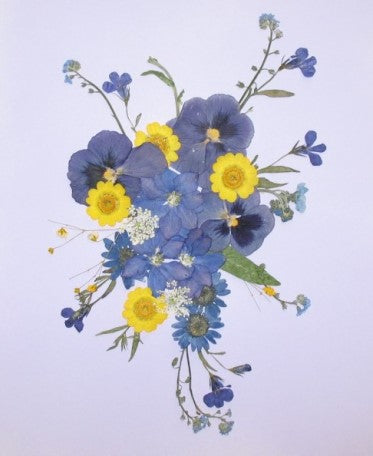 How to use pressed flowers a simple 5 step guide greetings of grace free to experiment with different types of paper flowers and gluing methods before you know it youll be an expert pressed flower artist yourself mightylinksfo