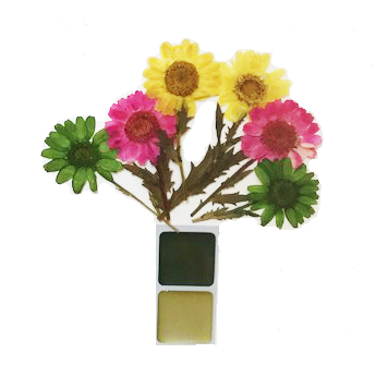 10 Amazing Things You Can Do With Pressed Flowers