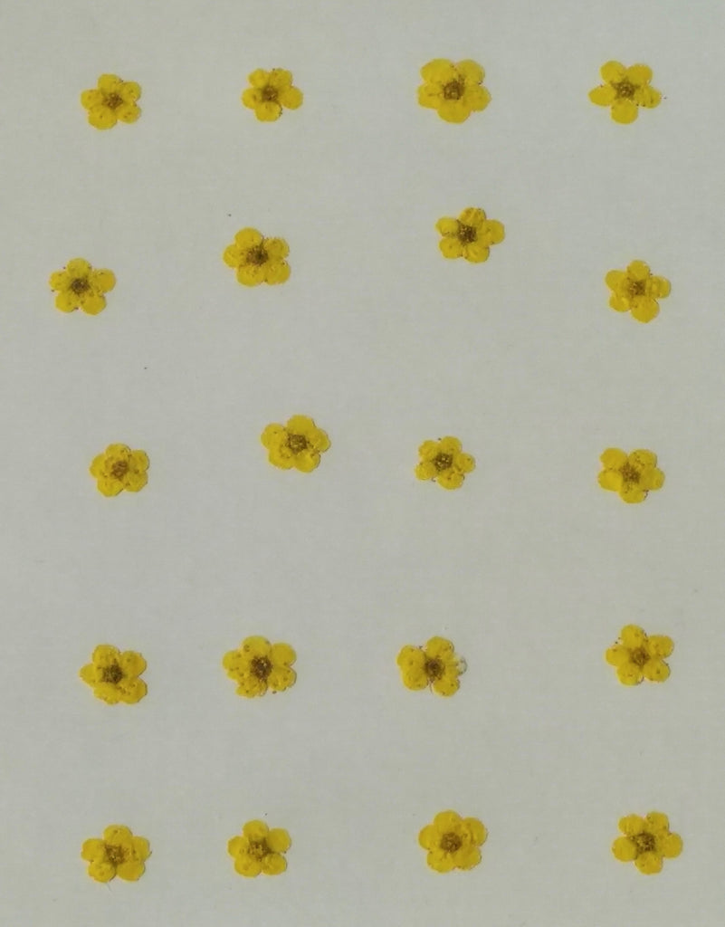 Plum Mini Yellow Flowers (yellow dyed)