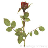 Rose with Stem (dark red, small)