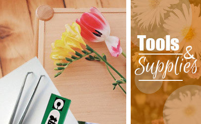 Greetings of Grace - Tools and Supplies