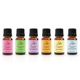 "7 Jardins ""Life is Beautiful"" Essential Oils Synergy Blends Kit - Top 6 Essential Oils Aromatherapy Kit 100% Pure Therapeutic Essential Oils Gift Pack - Mediderm - 10"