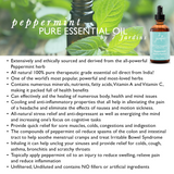 "7 Jardins Mind, Nose & Throat Cleaner Therapeutic Essential Oil  ★ 100% Pure Peppermint ""Mentha Pipiretta"" (120 ml) ★Stimulates Digestion & Ease Muscles ★Enriched with Plant Based Natural Ingredients - Mediderm - 6"