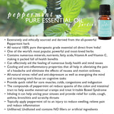 "7 Jardins Mind, Nose & Throat Cleaner Therapeutic Essential Oil  ★ 100% Pure Peppermint ""Mentha Pipiretta"" (10 ml) ★Stimulates Digestion & Ease Muscles ★Enriched with Plant Based Natural Ingredients - Mediderm - 12"