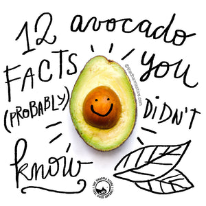 12 Avocado Facts You Probably Didn't Know