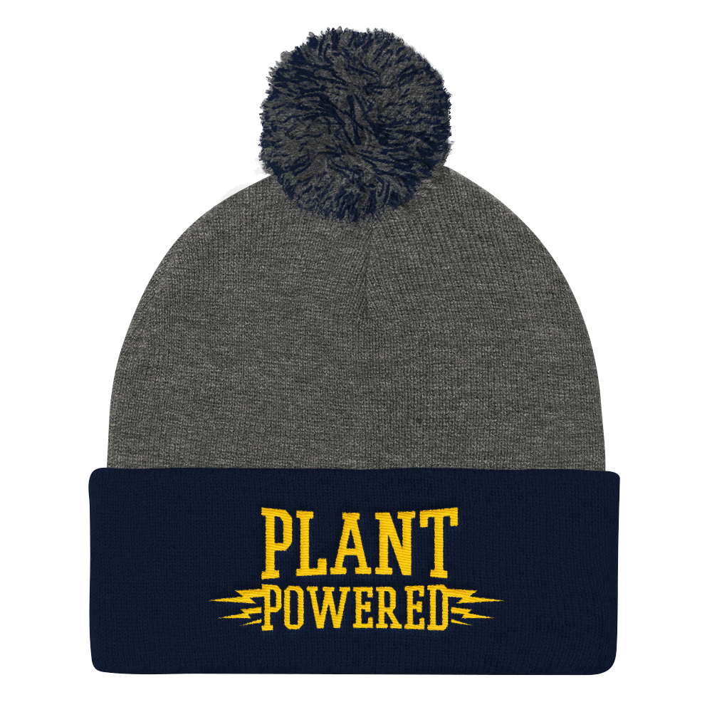 Vegan Beanie Hat - Plant Powered Hat - Grey and Navy