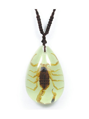 Real Bark Scorpion Teardrop Necklace, Glow In the Dark
