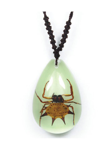 Real Spinyback Spider Necklace, Glow In the Dark