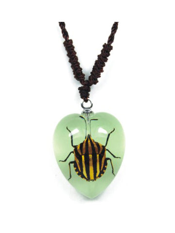 Real Red-Striped Stink Bug Necklace - Glow-In-The-Dark