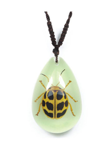Real Lady Bug Necklace, Glow In the Dark