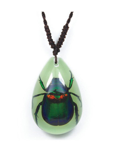 Real June Bug Necklace, Glow In the Dark