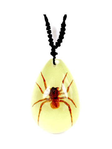 Real Brown Recluse Spider Necklace, Glow In the Dark