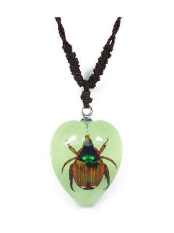 Real Chafer Beetle Heart Shaped Necklace, Glows In The Dark