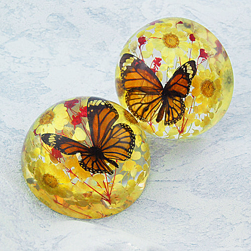 Butterfly Half-Dome Yellow Decoration Real Monarch Butterfly