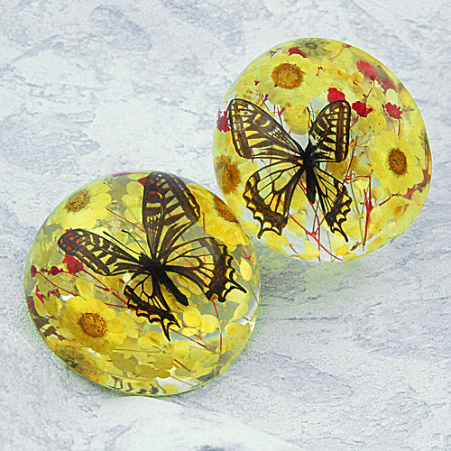 Butterfly Half-Dome Yellow Decoration Real Butterfly