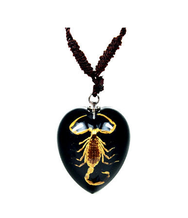 Real Bark Scorpion Heart Shaped Necklace, Black