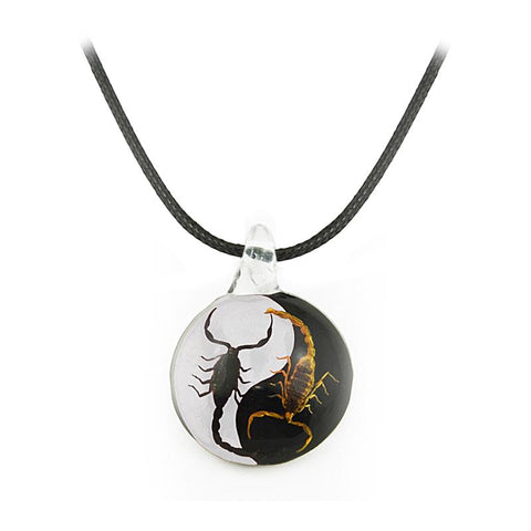 Real Black Emperor and Bark Scorpion Necklace, Black and White Yin-Yang Style 3 Larger
