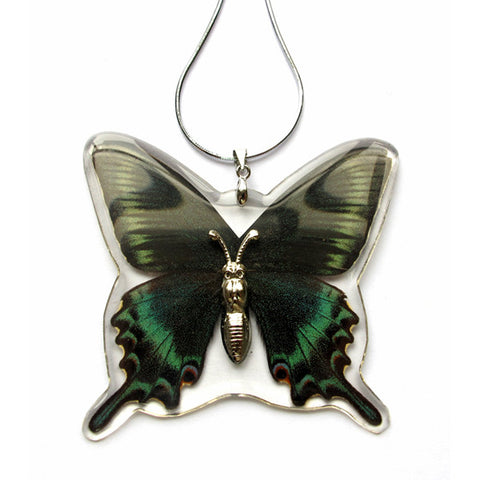 Butterfly Necklace, Real Butterfly, Chain Included