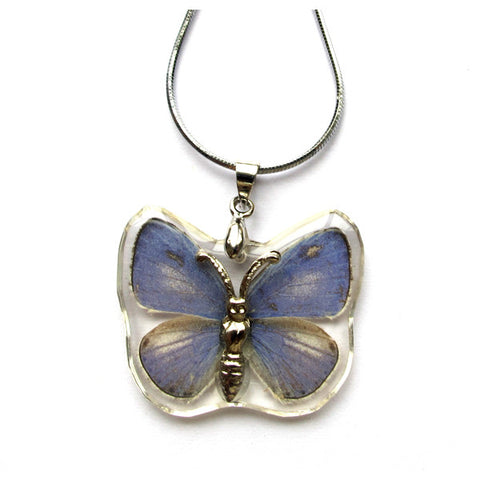 Real Butterfly, Eastern Tailed-Blue Necklace