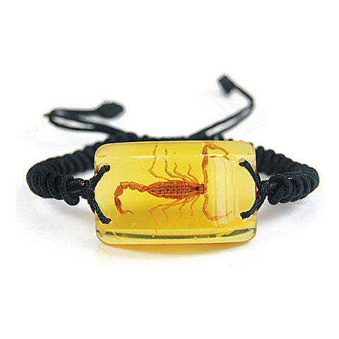Real Bark Scorpion Rectangle Shaped Bracelet, Amber Color Lucite