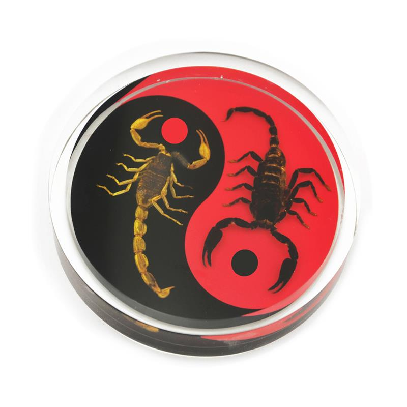 Black Emperor and Bark Scorpion Red and Black Yin-Yang Scorpion Paperweight Hockey Puck Shape Style 2