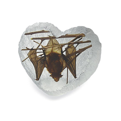 Bat Heart Shape Desktop
