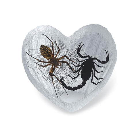 Black Emperor Scorpion and Wolf Spider Heart Shape Desktop
