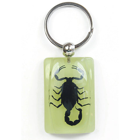 Real Black Emperor Scorpion Keychain, Glow In the Dark