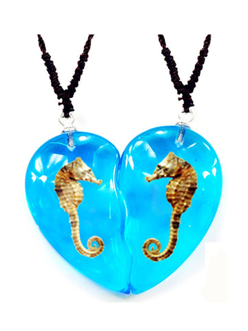 Real Seahorse Friendship Necklace, Blue