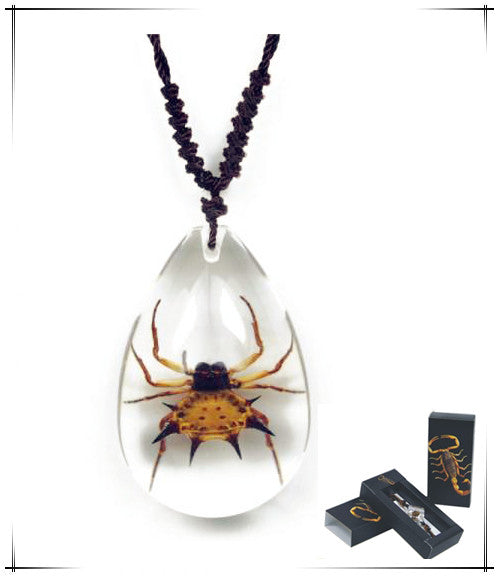 Real Spinyback Spider Necklace with Nylon Cord