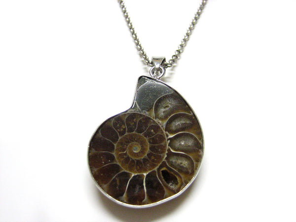 Large Ammonite Fossil Necklace