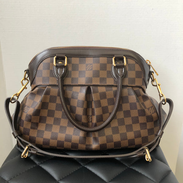 Louis Vuitton Trevi PM in Damier Ebene