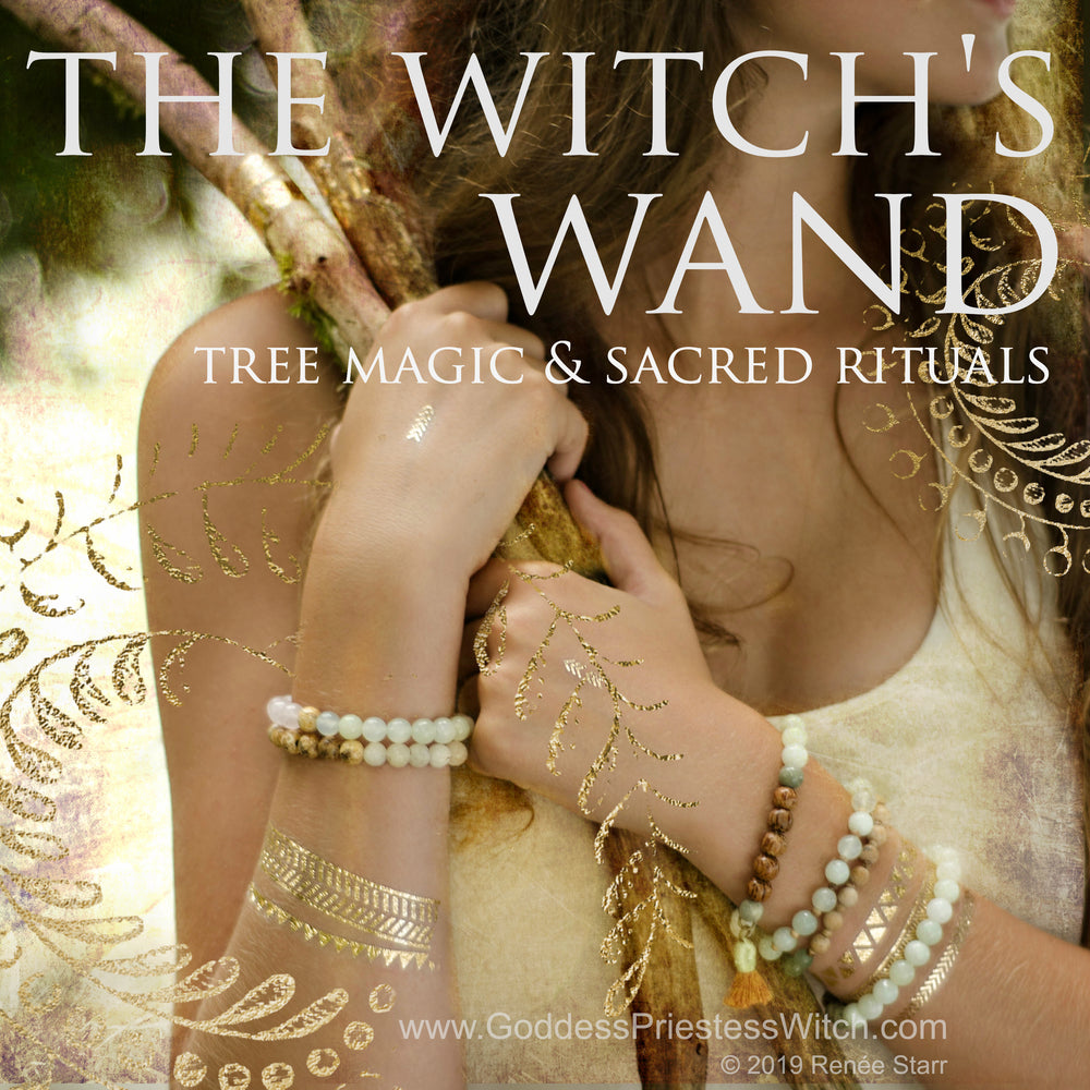 The Witch's Wand; Tree Magic & Sacred Rituals E-Course