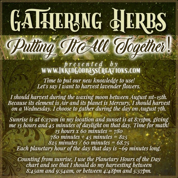 Gathering Herbs: Putting It All Together