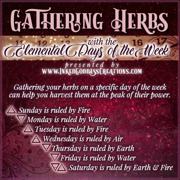 Gathering Herbs with the Elemental Days of the Week
