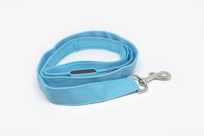 Bright Doggie Leash