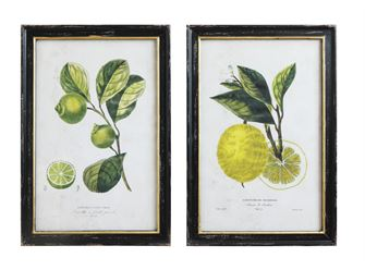 FRAMED WALL ART LEMON/LIME
