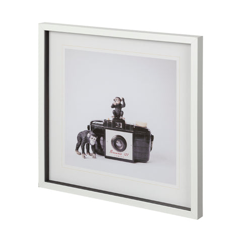 Monkeys & Vintage Camera Framed Art