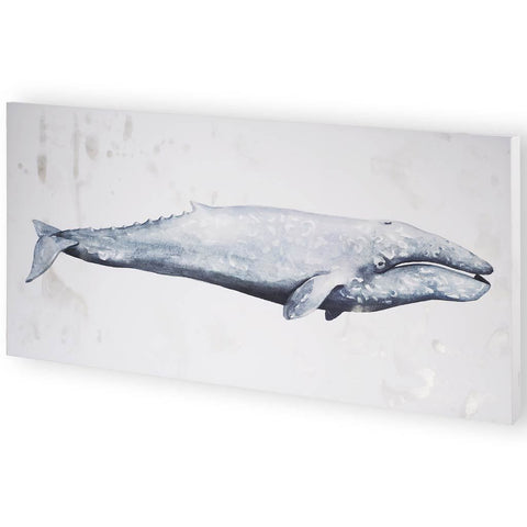 Whale Portrait IV  | Framed Art | Jordans Home
