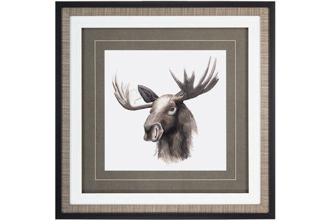 Western Animal Study IV  | Framed Art | Jordans Home