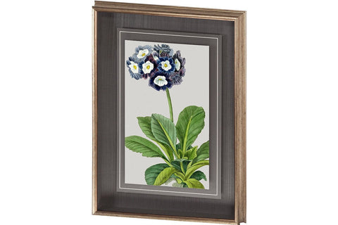Vintage Garden Varieties IV Artwork  | Framed Art | Jordans Home