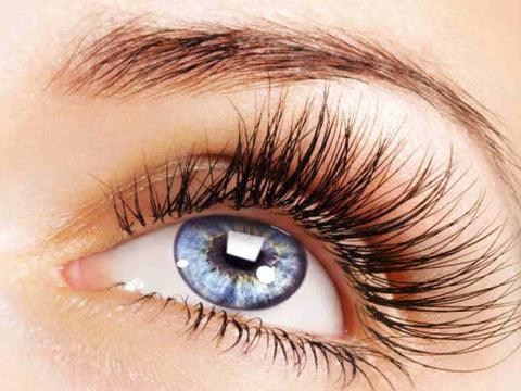 Mink Eyelash Refill - Laura's Beauty Touch, Spa Services in Rego Park, New York 11374