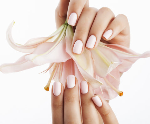 Shellac Manicure - Laura's Beauty Touch, Spa Services in Rego Park, New York 11374