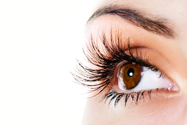 Mink Eyelashes Refill - Laura's Beauty Touch, Spa Services in Rego Park, New York 11374