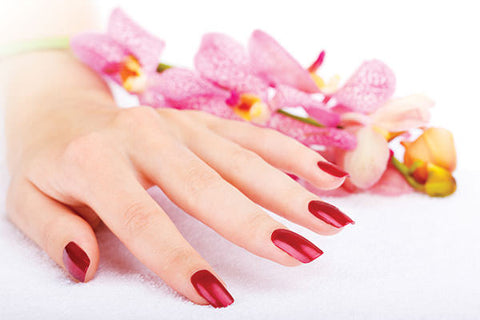 Change Polish(Repair) - Laura's Beauty Touch, Spa Services in Rego Park, New York 11374