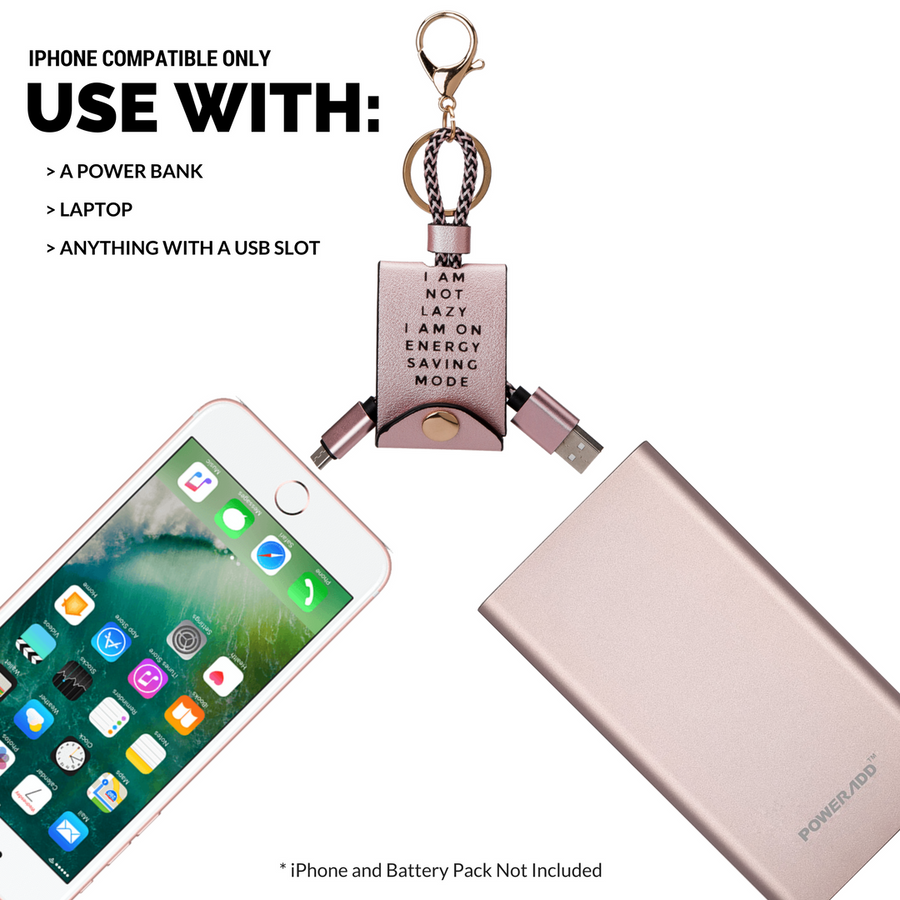 Melie Bianco Luxury Vegan Leather Pink and Gold USB iPhone Charger and Accessory (10866475011)