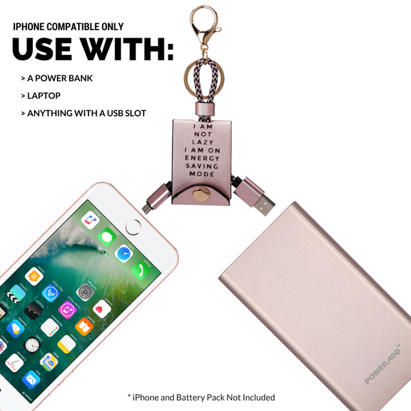 USB & iPhone Charger Pink