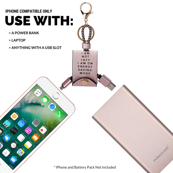 Melie Bianco Luxury Vegan Leather Rose Gold and Gold USB iPhone Charger and Accessory